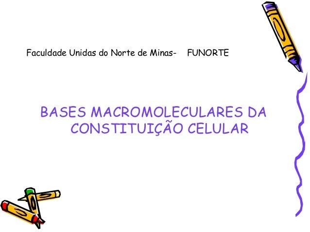 Faculdade Unidas do Norte de Minas-  FUNORTE  BASES MACROMOLECULARES DA CONSTITUIÇÃO CELULAR