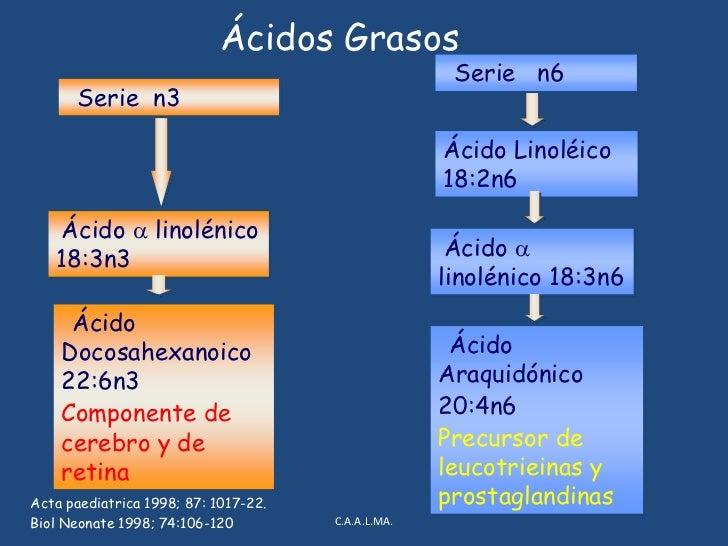 Grasas<br />Nutrimento más variable: individual, momento del día, momento de la tetada, dieta materna<br />Contiene lipasa...