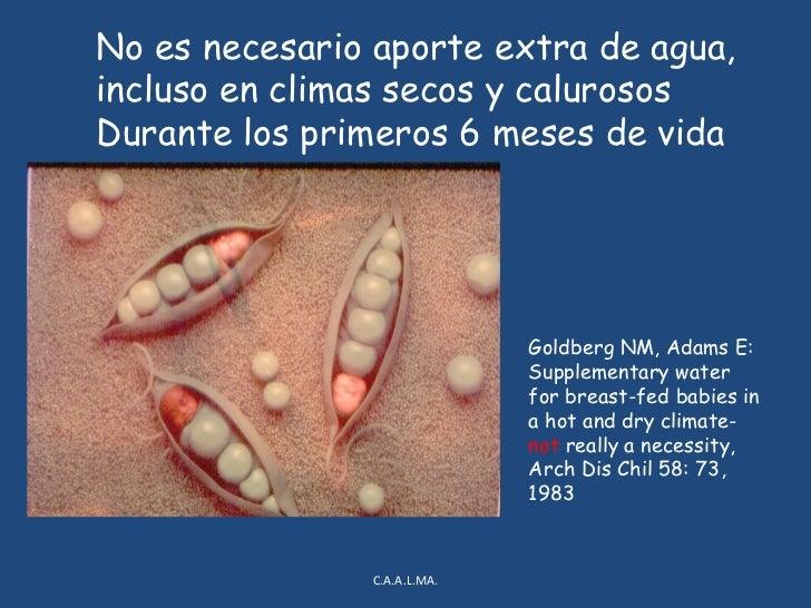 MINERALES<br />BAJA CARGA RENAL DE SOLUTOS ( MENOR TRABAJO RENAL, NO REQUIERE LIQUIDOS EXTRAS ).<br />CALCIO Y FOSFORO:<br...