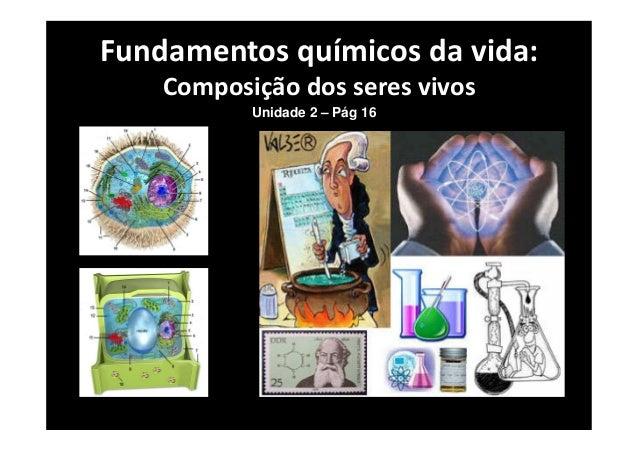 Fundamentos químicos da vida: Composição dos seres vivos Unidade 2 – Pág 16