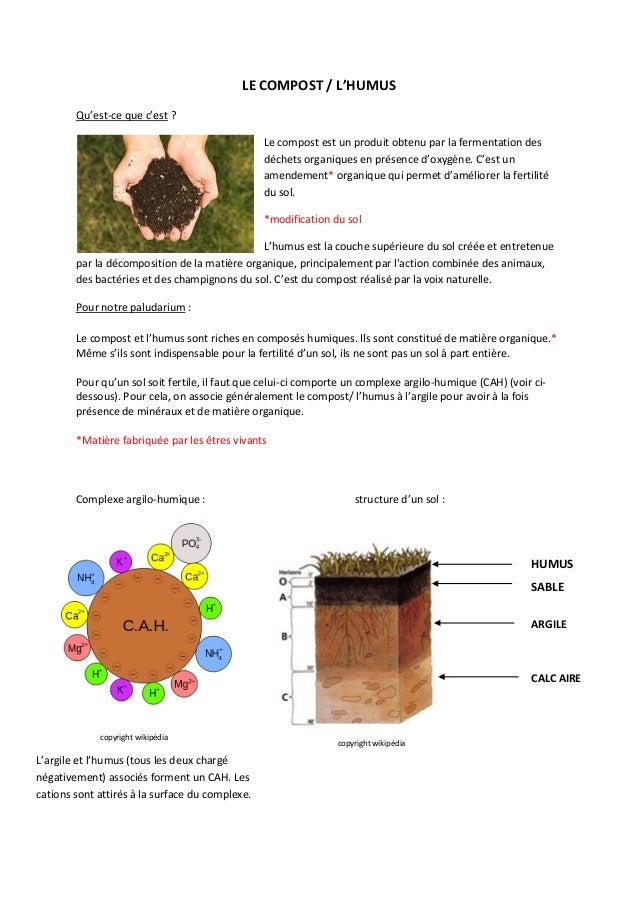 LE COMPOST / L'HUMUS Qu'est-ce que c'est ? Le compost est un produit obtenu par la fermentation des déchets organiques en ...