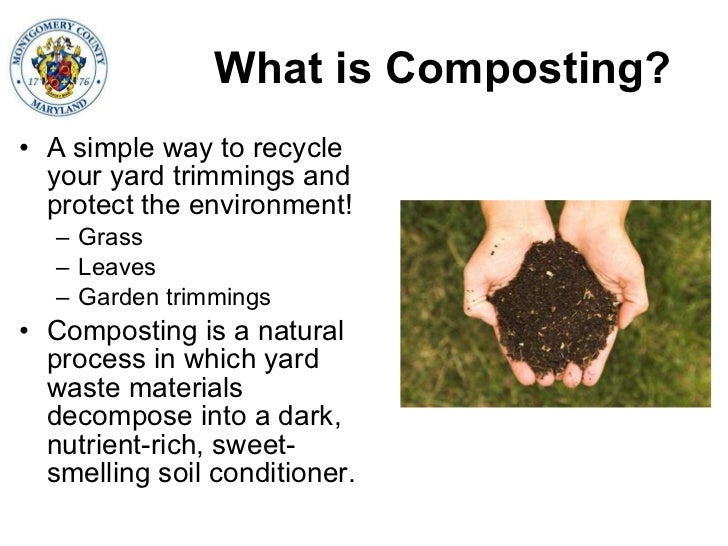 6 Ways To Turn Your House Into A Productive Home Environment: Home Composting