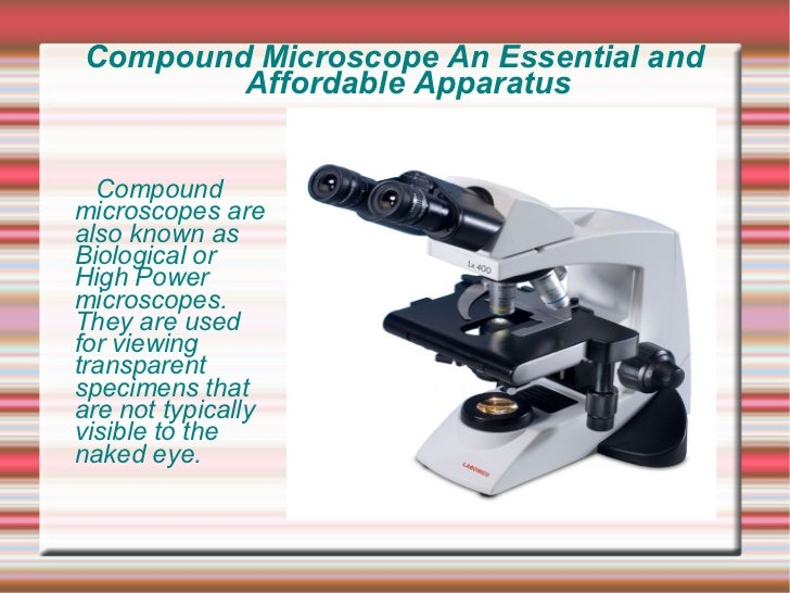 Compound Microscope An Essential and        Affordable Apparatus  Compoundmicroscopes arealso known asBiological orHigh Po...