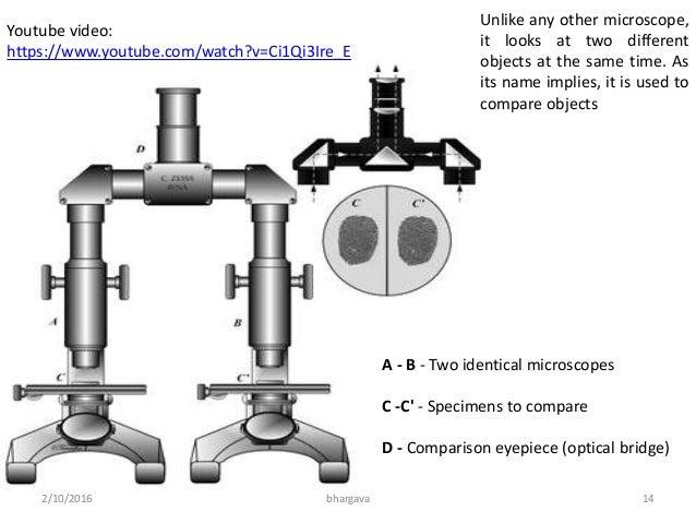 Light microscopy comparison microscope 2102016 13bhargava 14 ccuart Gallery