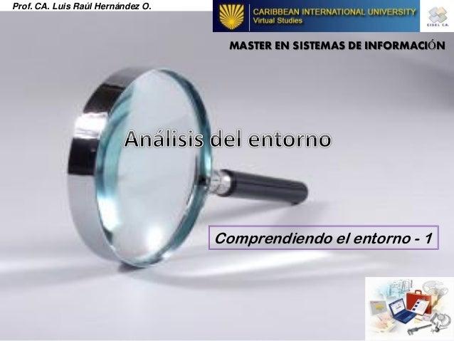 Prof. CA. Luis Raúl Hernández O. MASTER EN SISTEMAS DE INFORMACIÓN Comprendiendo el entorno - 1
