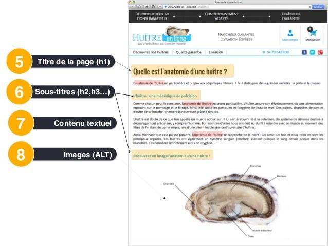 Images8 • Bien nommer le fichier image • Renseignez les attributs ALT des images • Inclure des mots-clés dans l'attribut AL...
