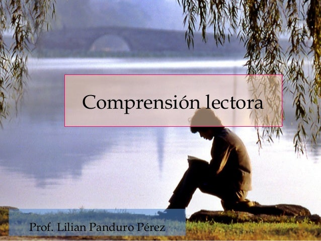 Comprensión lectora Prof. Lilian Panduro Pérez