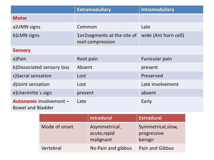 thoracic myelopathy signs and symptoms