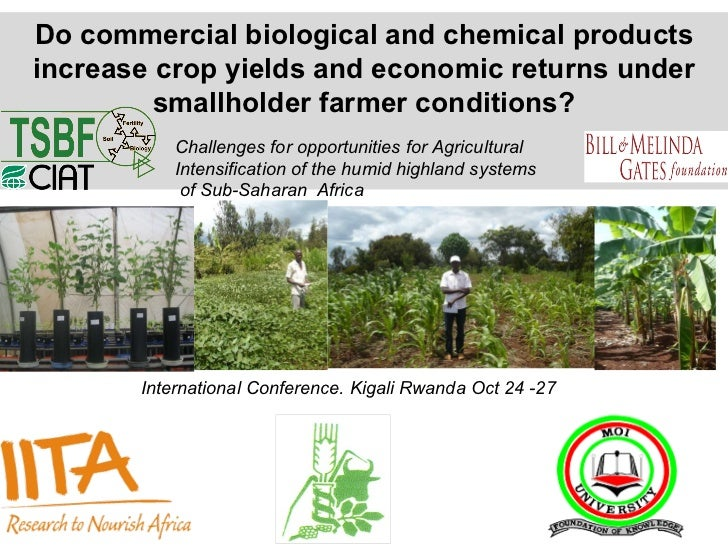 Do commercial biological and chemical products increase crop yields and economic returns under smallholder farmer conditio...