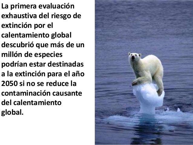 La primera evaluación exhaustiva del riesgo de extinción por el calentamiento global descubrió que más de un millón de esp...