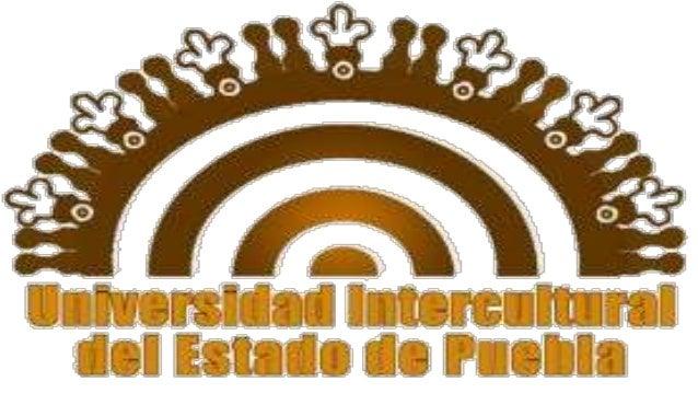 *UNIVERCIDAD INTERCULTURAL DEL ESTADO DE PUEBLA *DEPARTAMENTO DE PROCESOSO SOCIALES MATERIA:COMPUTACION II PROFESOR: MIGUE...