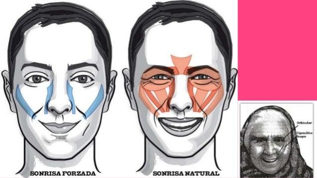 Noldus - FaceReader Software de detección de rostro altamente parametrizable.