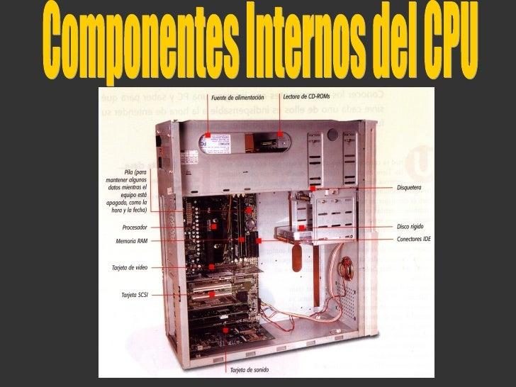 Componentes internos del computador for Interno s