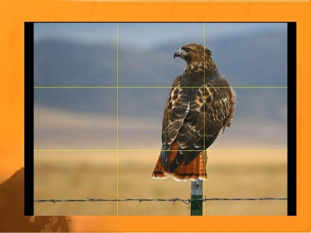 ppt about photography