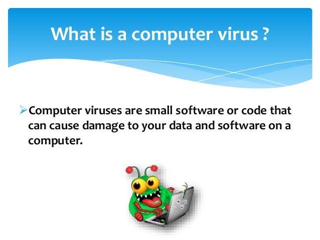 computer viruses term paper