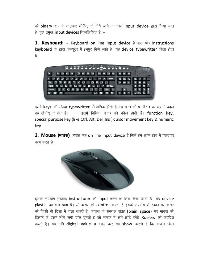 Essay on input devices of computer