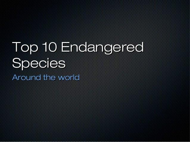 Top 10 Endangered Animals around the world