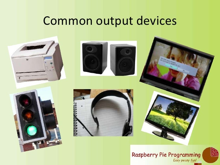 five examples of output devices