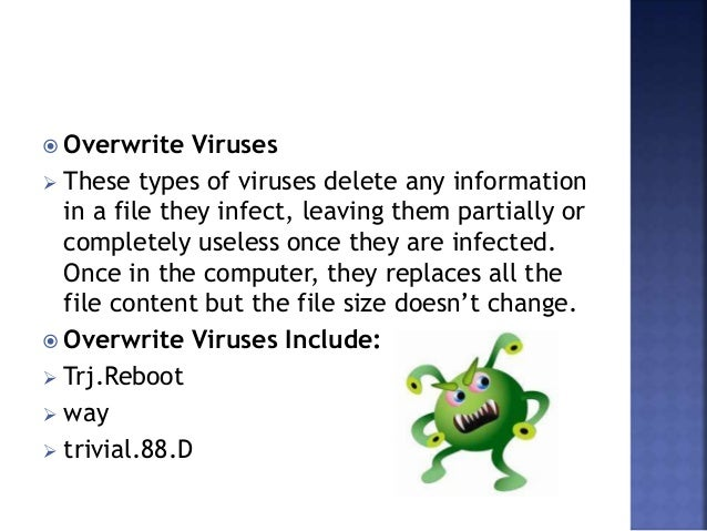 Computer Viruses: Types, Infection, Removal