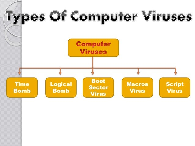 8 common types of computer viruses Two of the most common types of malware are viruses and  viruses a computer virus is a type of malware that propagates by inserting a copy of itself into.