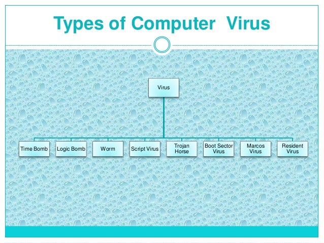 what is a computer virus types of computer virus