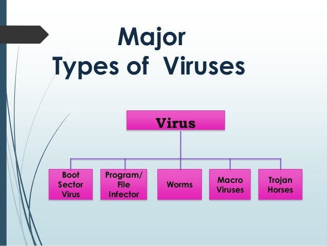 Computer virus & its cure