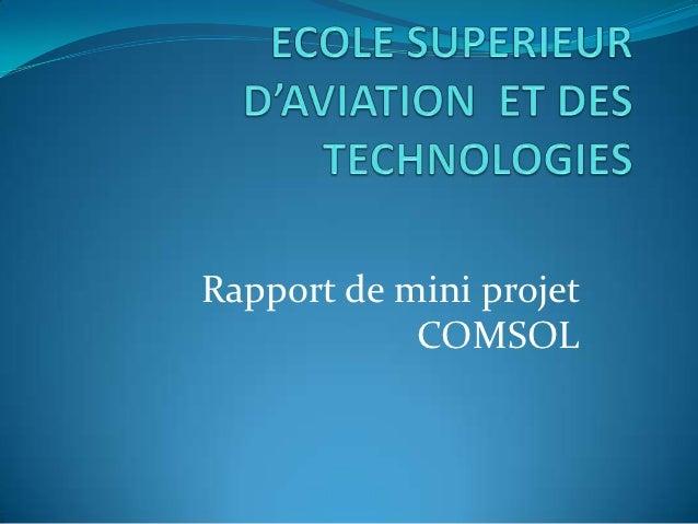 Rapport de mini projet            COMSOL