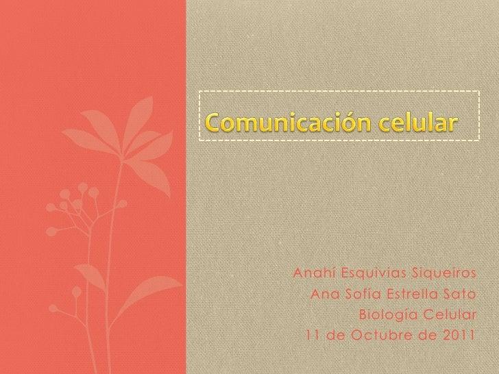 Comunicación celular<br />AnahíEsquivias Siqueiros<br />Ana Sofía Estrella Sato<br />Biología Celular<br />11 de Octubre d...