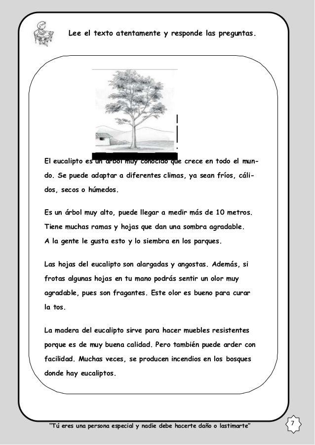Comunicacion - Informacion sobre el eucalipto ...