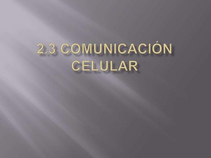 2.3 Comunicación celular<br />