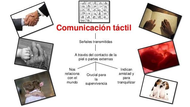 Comunicacion Tactil 1