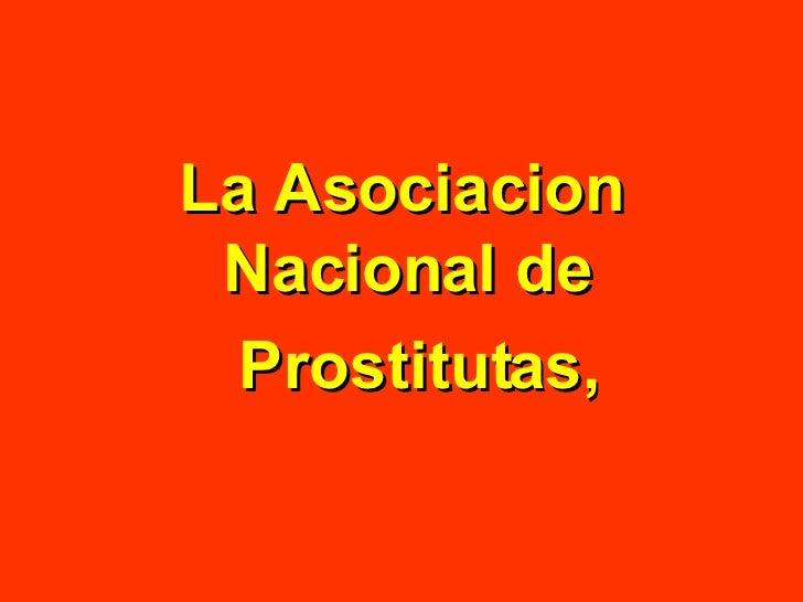 masajes damaris numeros de prostitutas