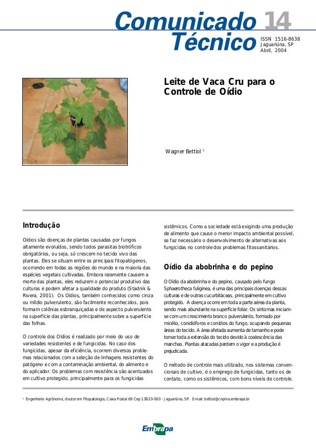 14 ISSN 1516-8638 Jaguariúna, SP Abril, 2004  Leite de Vaca Cru para o Controle de Oídio  Wagner Bettiol 1  Introdução Oíd...