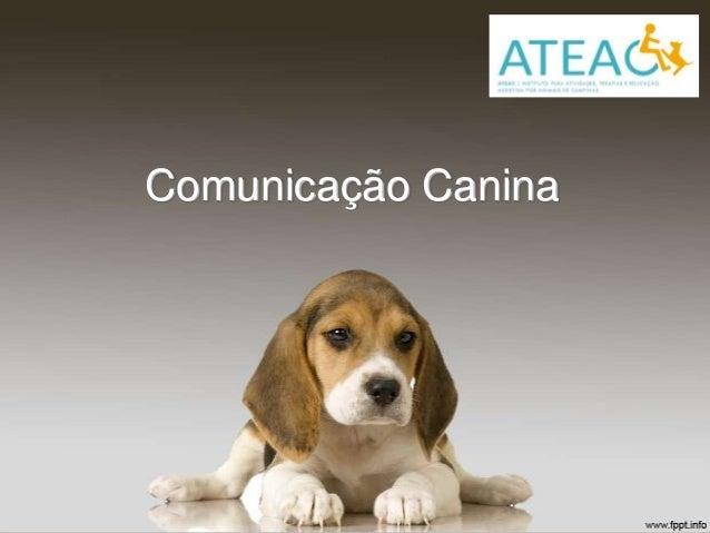 Comunicação Canina