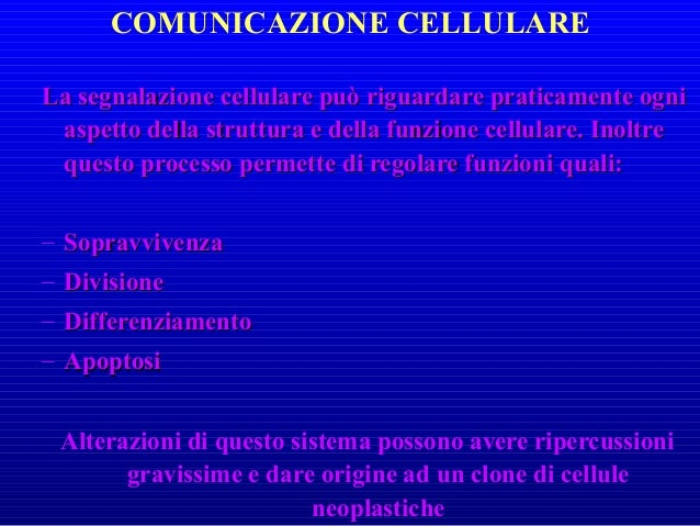 L'ADATTAMENTO FUNZIONALE AD NUOVA SITUAZIONE AMBIENTALE E' POSSIBILE PERCHE' GLI ORGANISMI (COSTITUITI DA CELLULE) POSSIED...