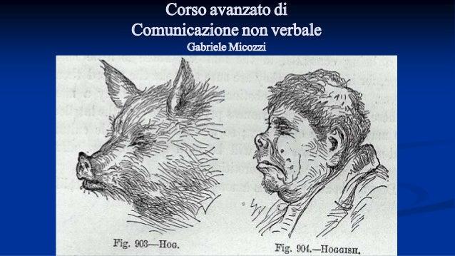 GABRIELE MICOZZI - gmicozzi@yahoo.it Corso avanzato di Comunicazione non verbale Gabriele Micozzi