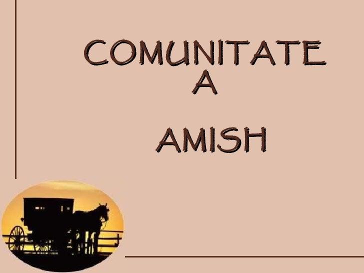 COMUNITATEA AMISH