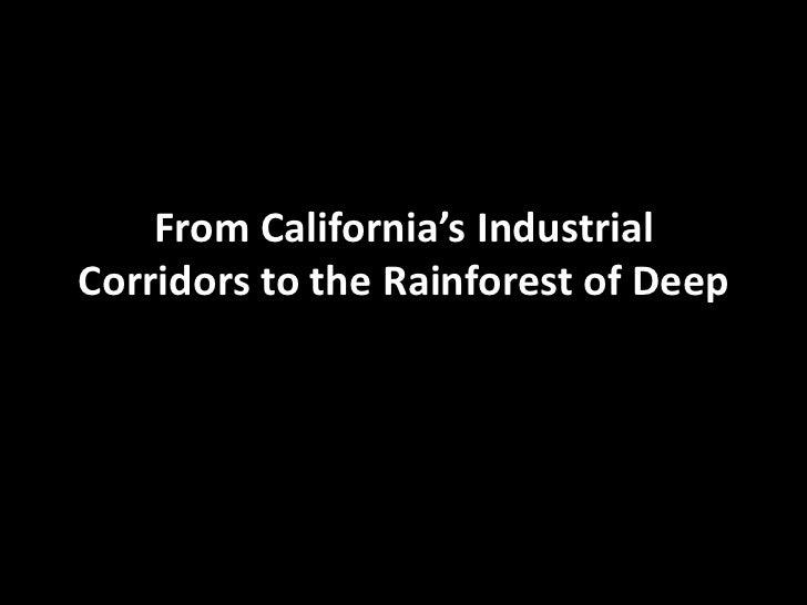 From California's Industrial Corridors to the Rainforest of Deep <br />