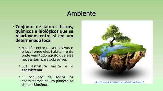 Conceitos basicos da ecologia cap 5 Slide 3