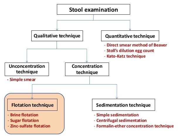concentration technique for stool examination pdf