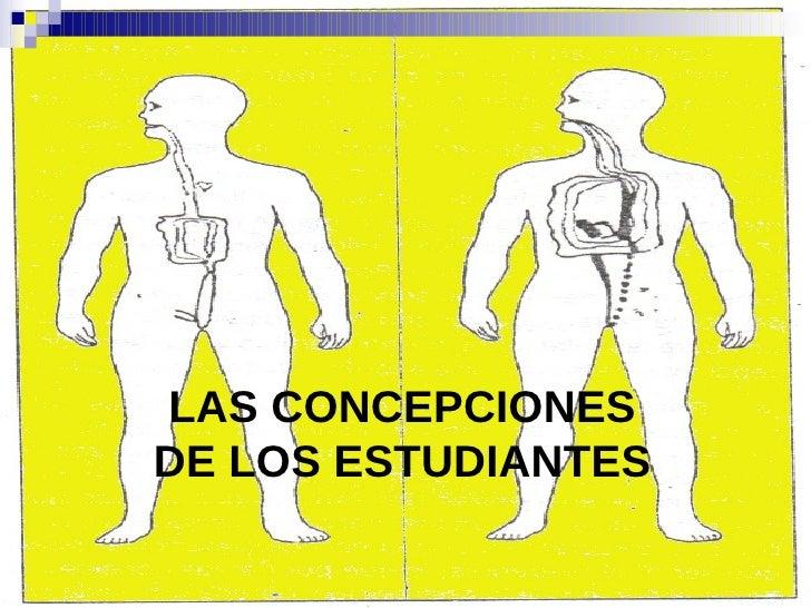 LAS CONCEPCIONES DE LOS ESTUDIANTES