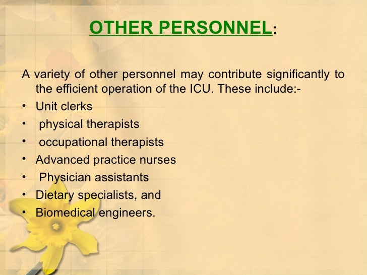 OTHER PERSONNEL : <ul><li>A variety of other personnel may contribute significantly to the efficient operation of the ICU....