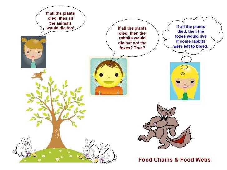 How Animals Eat Their Food Cartoon