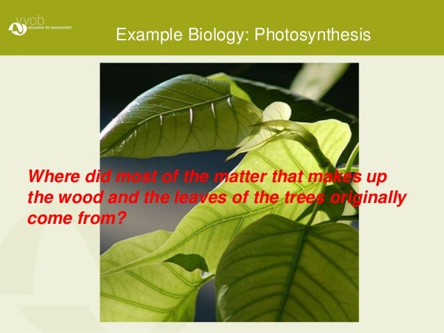Example Biology: Photosynthesis Where did most of the matter that makes up the wood and the leaves of the trees originally...