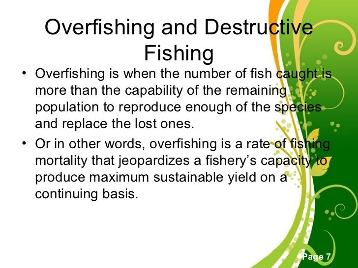 overfishing cause and effect Overfishing is catching too many fish at once, so the breeding population becomes too depleted to recover overfishing often goes hand-in-hand with wasteful types of commercial fishing that haul in massive amounts of unwanted fish or other animals, which are then discarded as a result of prolonged.