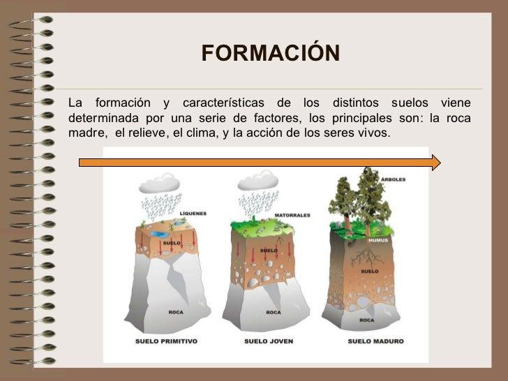 concepto basico de suelos