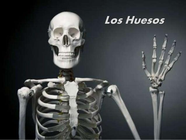 Los Huesos SBMM