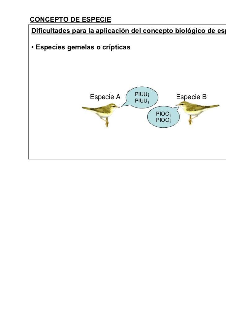 CONCEPTO DE ESPECIEDificultades para la aplicación del concepto biológico de especie• Especies gemelas o crípticas        ...