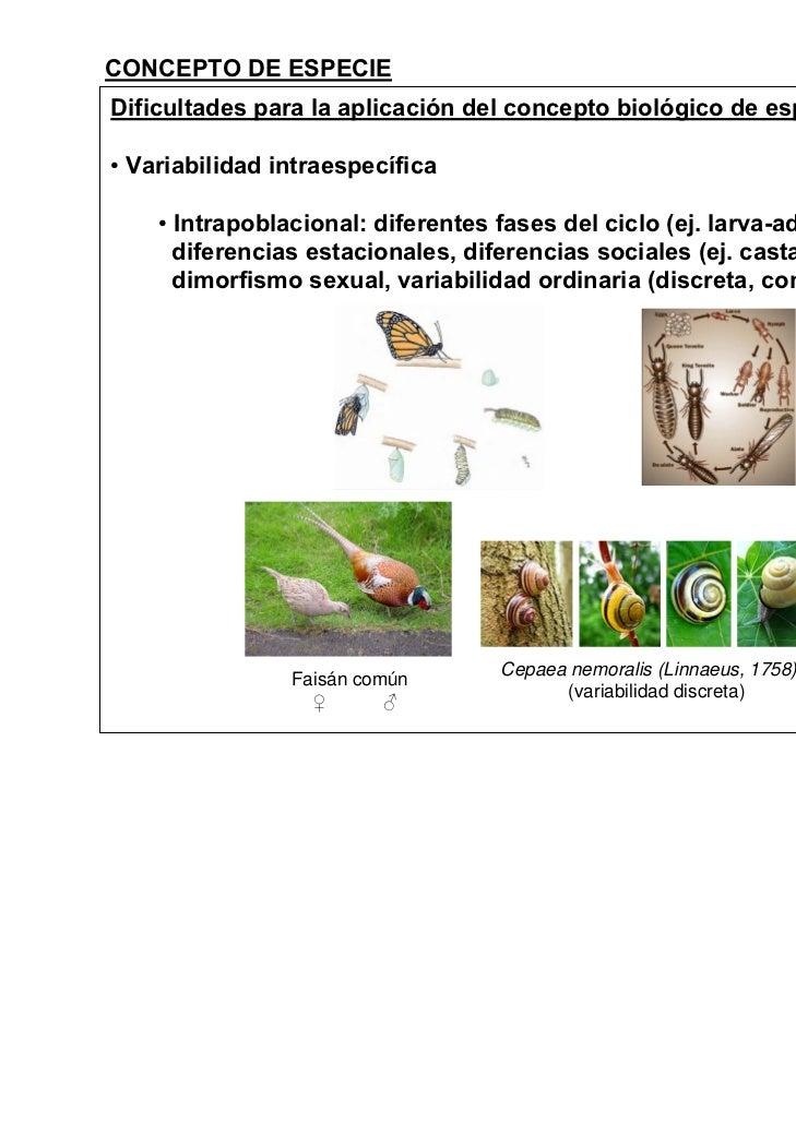 CONCEPTO DE ESPECIEDificultades para la aplicación del concepto biológico de especie• Variabilidad intraespecífica    • In...