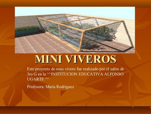 MINI VIVEROSMINI VIVEROS Este proyecto de mini vivero fue realizado por el salón de 3ro G en la ^^INSTITUCION EDUCATIVA AL...